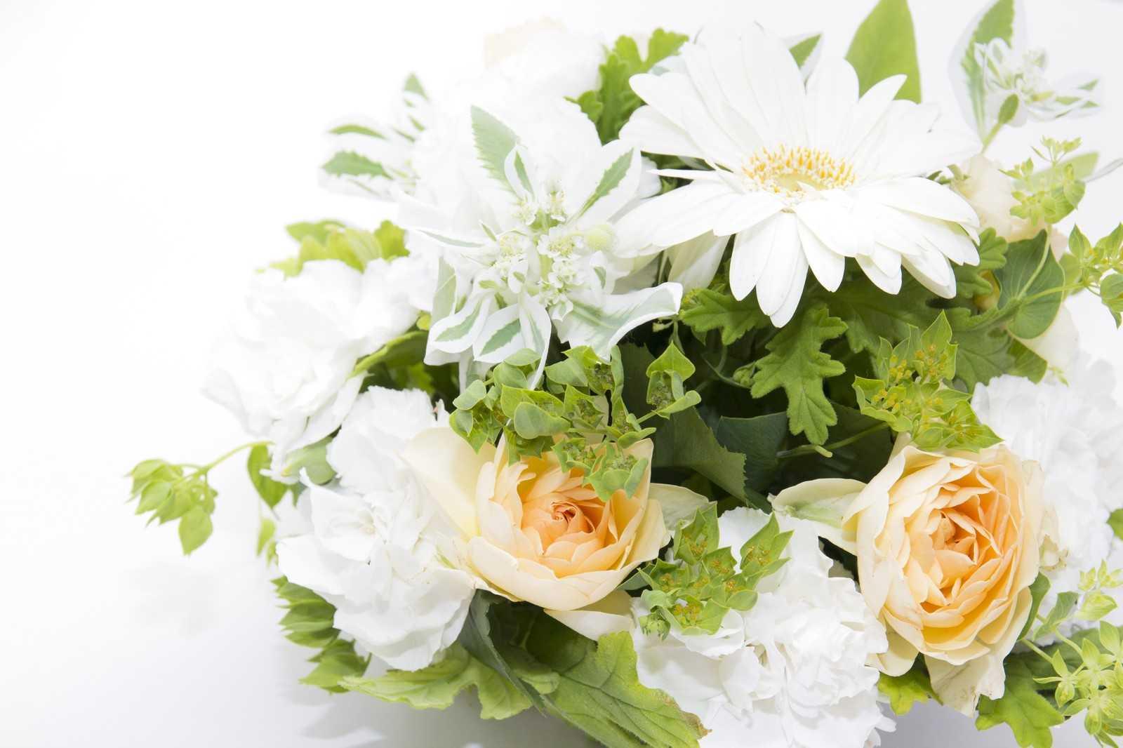 花卉組合のホームページの紹介(誕生花)