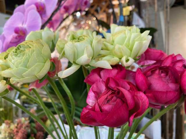 1月24日-1月26日 Weekend Flower